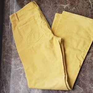 Anne Taylor LOFT Mustard Corduroy sz 8